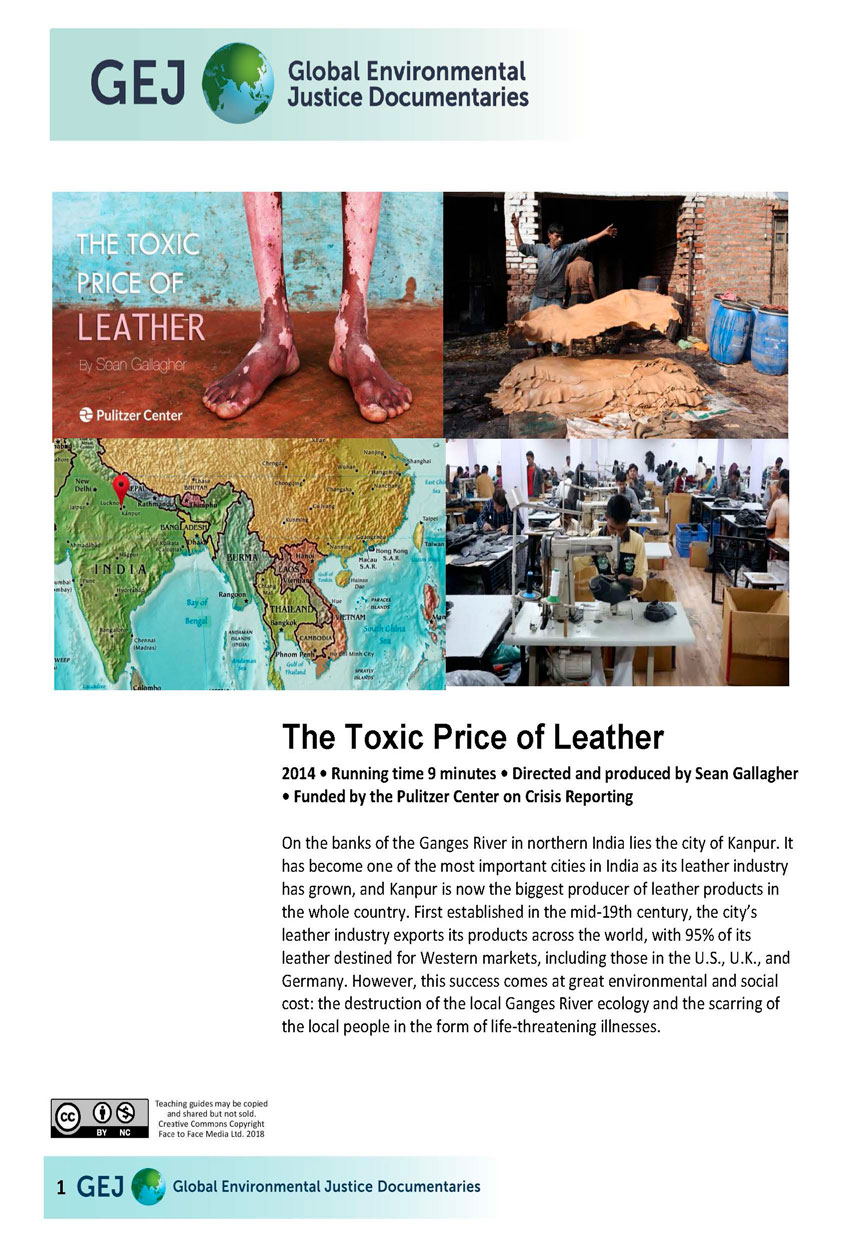 Toxic Price of Leather in India